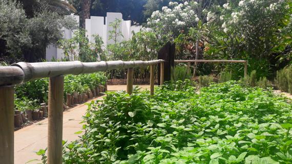 Kräutergarten Jardin Sabadin