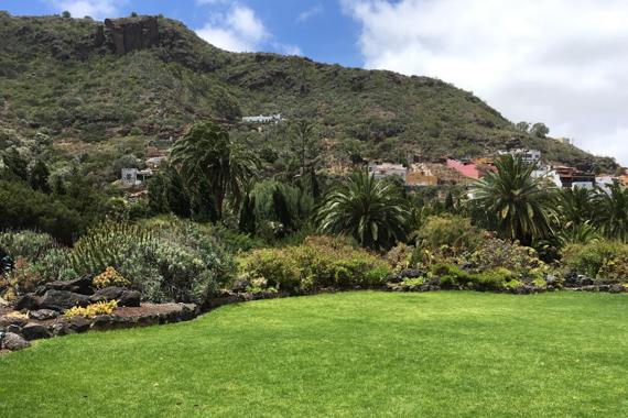 Schön grün - der Botanische Garten Las Palmas