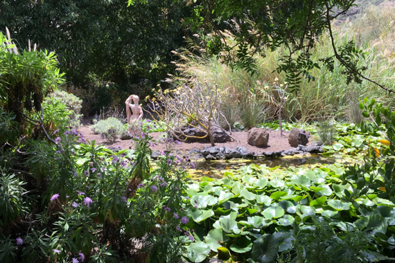 Teich im Jardin Canario