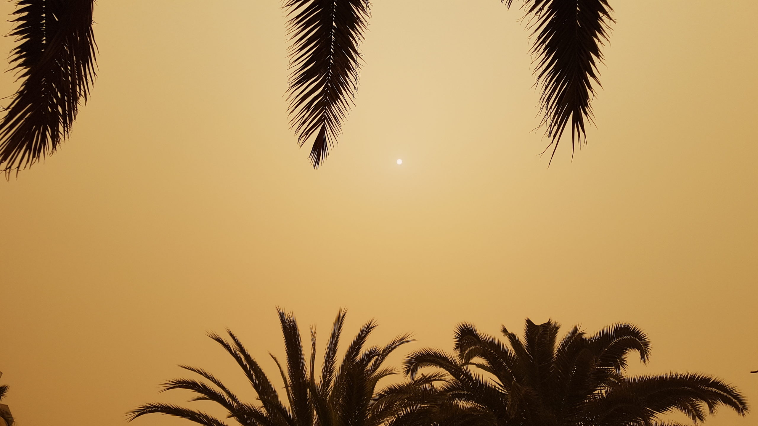 Sonne im Calima