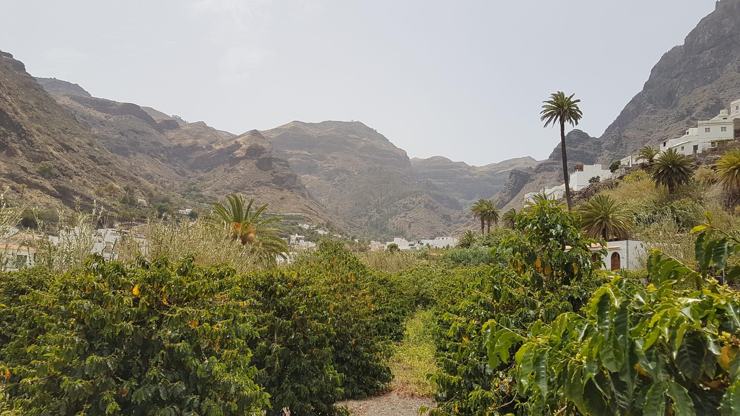 Lage der Finca Los Castanos im Tal